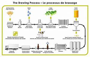 Beer Brewing Process  U2013 Tales Of Froth
