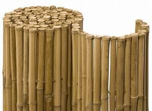 Bambus Auf Balkon : balkon sichtschutz aus bambus praktische und originelle idee ~ Eleganceandgraceweddings.com Haus und Dekorationen