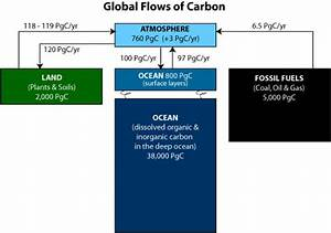 Carbon Cycle | Science Mission Directorate