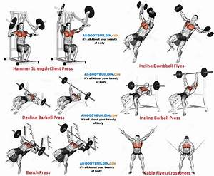 Chest Training Program For Muscle Mass  Definition  And Strength