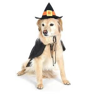 Dog Halloween Costumes Witches