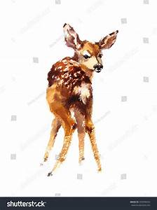 Watercolor Baby Deer Hand Painted Fawn Stock Illustration ...