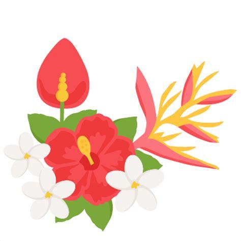 Tropical Flower Clipart, Hawaiian, Daisy, Flower Border ...