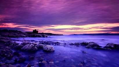 Violet Background Desktop Backgrounds Wallpapers Nature Definition