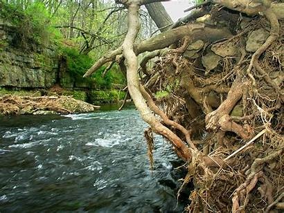 Apple Canyon River Park State Illinois Rock