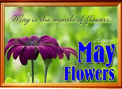 Card Flowers Month Flower Cards 123greetings