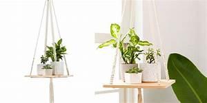 Suspension Pour Plante Interieur : plantes pour suspensions quelles plantes choisir marie claire ~ Teatrodelosmanantiales.com Idées de Décoration