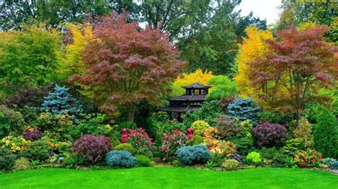 pasangan  inggris ubah sepetak tanah menjadi taman