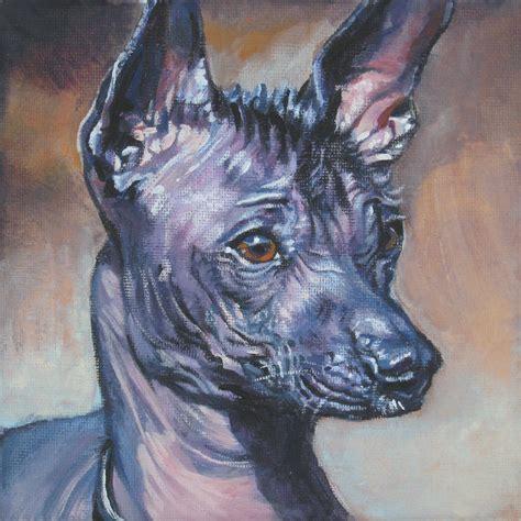 Нарисованная мексиканская голая собака - фото и обои ...
