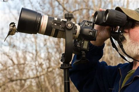 best dslr for photography 3 best dslr cameras for wildlife photography read before