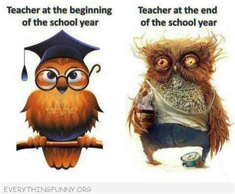 Funny Quotes Year End Funny Cartoon Teacher Owl Beginning Year End Of Year