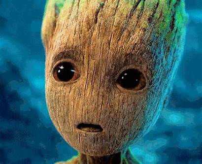 Groot Gifs Adorable Angry Literally