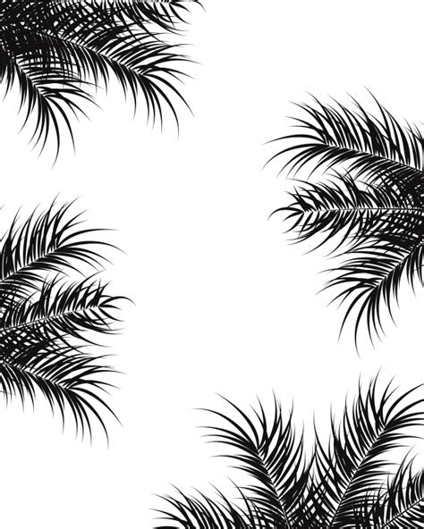 tropical design  black palm leaves  plants  white