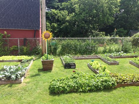 Garden School by Food Systems Project Northwest Initiative