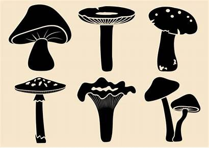 Vector Illustration Mushroom Silhouette Mushrooms Different Clip