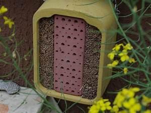 Abri à Insectes : trypoxylon clavicerum tous aux abris le monde des insectes ~ Premium-room.com Idées de Décoration