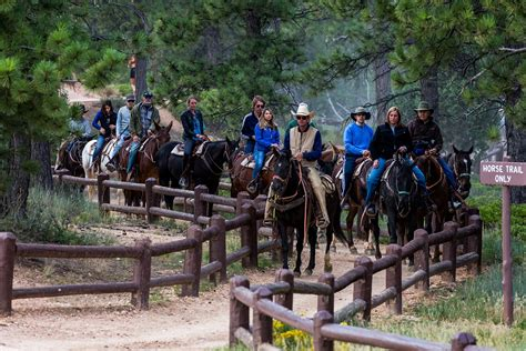 riding lake horseback george around horse giulietta hideaway romeo inn mountains hideawaylakegeorge