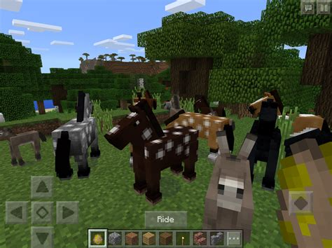minecraft horses need savanna pocket edition pe ever than know biomes plains ll different many donkeys spawn breeds appear they