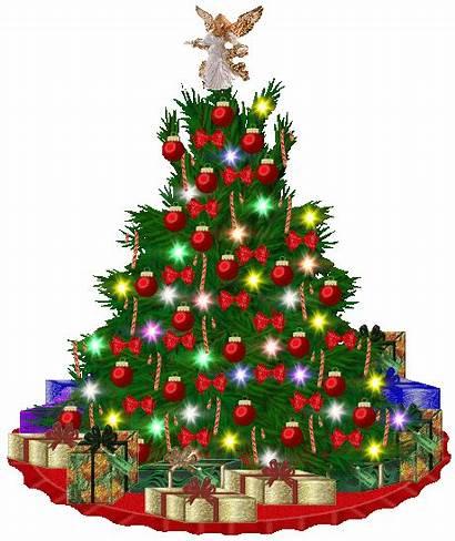 Christmas Trees Tree Around Canada Gifs Advent