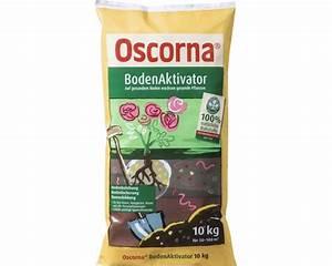 Oscorna Bodenaktivator Erfahrung : bodenaktivator oscorna 10 kg bei hornbach kaufen ~ Lizthompson.info Haus und Dekorationen