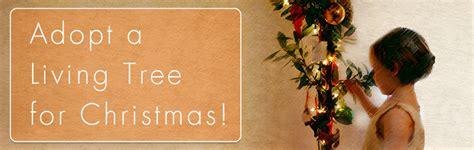 adopt a living tree for christmas sfenvironment org