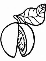 Peach Coloring Colouring Fruits Tree Template Printable Colors Recommended Bright Mycoloring sketch template