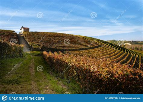 Autumn Walk After Harvest In The Hiking Paths Between The