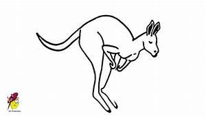 Kangaroo - How To Draw A Kangaroo