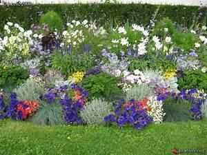 Parterre De Fleur Avec Cailloux : arras mairie parterre de fleurs avec du persil ~ Melissatoandfro.com Idées de Décoration