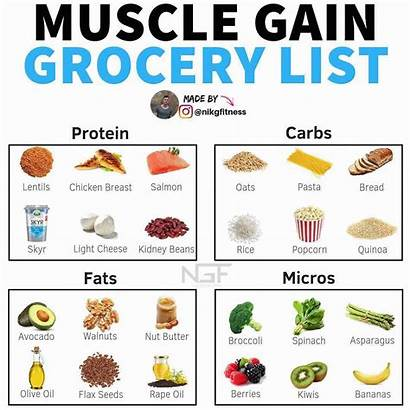 Muscle Gain Foods Protein Healthy Building Grocery