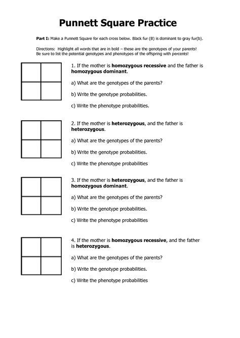 blank punnett square worksheet free worksheets library