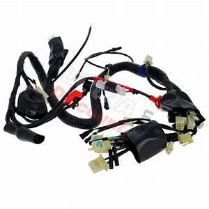 Wire Harness For Atv Shineray Quad 250cc Stxe  Ignition  Shineray Parts Atv 250 Stxe
