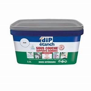 Anti Humidité Mur : sous couche peinture anti humidit resine de protection ~ Edinachiropracticcenter.com Idées de Décoration