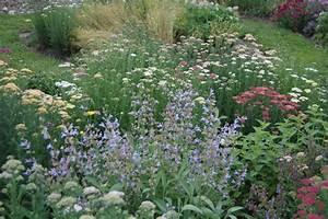 Herb, Garden, Design