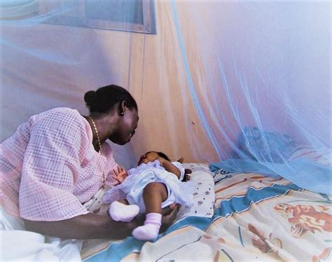 additions  malaria bed nets increase effectiveness