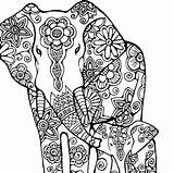 Coloring Elephant Indian Popular sketch template