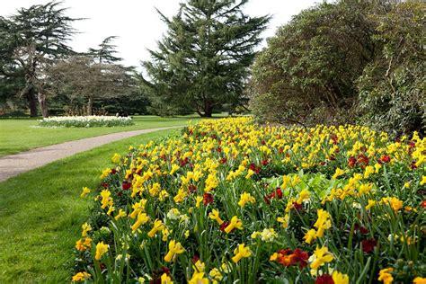 the flower garden the flower garden greenwich park the royal parks