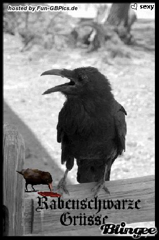 dark greetz dunkle gruesse gif facebook bilder gb