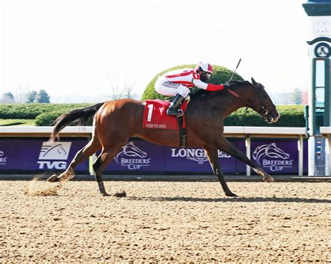 Highly Motivated Draws Clear in Nyquist