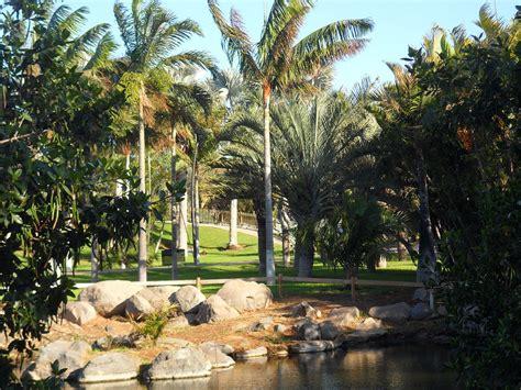 palmetum de santa cruz de tenerife wikipedia la