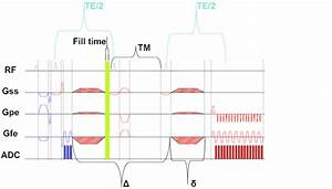 Steam Sequence For In Vivo Studies  The Fill