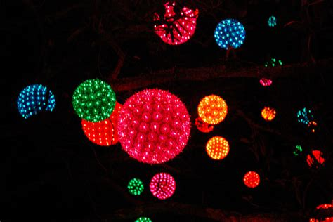 light balls hanging in a tree flickr photo sharing
