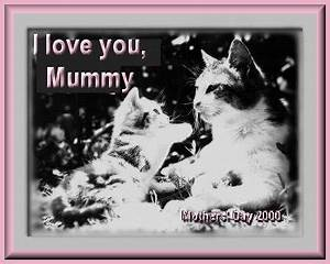 ..TRADITIONS UK - Mothers' Day