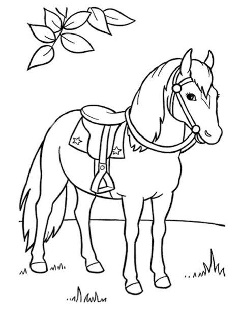 Kleurplaat Hooi by 25 Beste Idee 235 N Paardenfeest Thema S Op