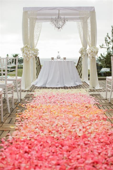 17 best ideas about coral roses on pinterest pretty