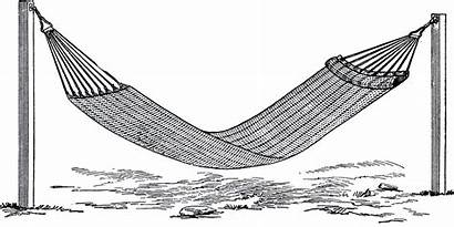 Hammock Clipart Cliparts Deposit Clip Mucus Library