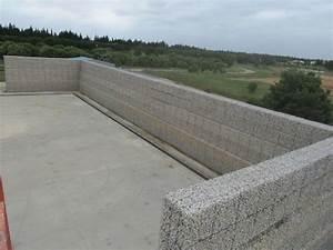 Cloison Jardin Anti Bruit : mur anti bruit en gabions avec noyau de sable ~ Edinachiropracticcenter.com Idées de Décoration
