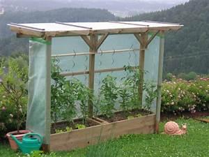 Tomatenhaus Holz Bausatz : die besten 25 tomatenhaus selber bauen ideen auf pinterest selbstgebautes gew chshaus ~ Whattoseeinmadrid.com Haus und Dekorationen