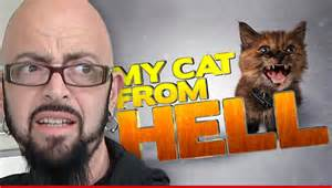 my cat from hell my cat from hell jackson galaxy sued are you