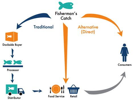 Marketing Caign by Is It For You Market Your Catch